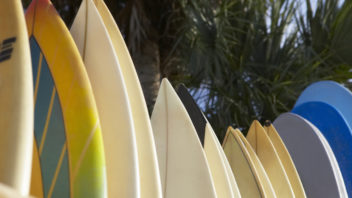 Surfboards/Boogie Boards